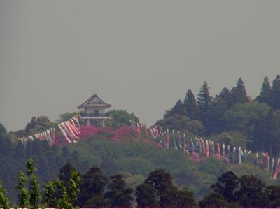 万木城まつり_convert_20100505225330