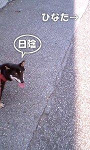 110818_atsui.jpg
