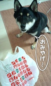 110917_fuku.jpg