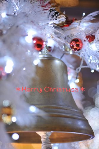 christmas2009_2.jpg