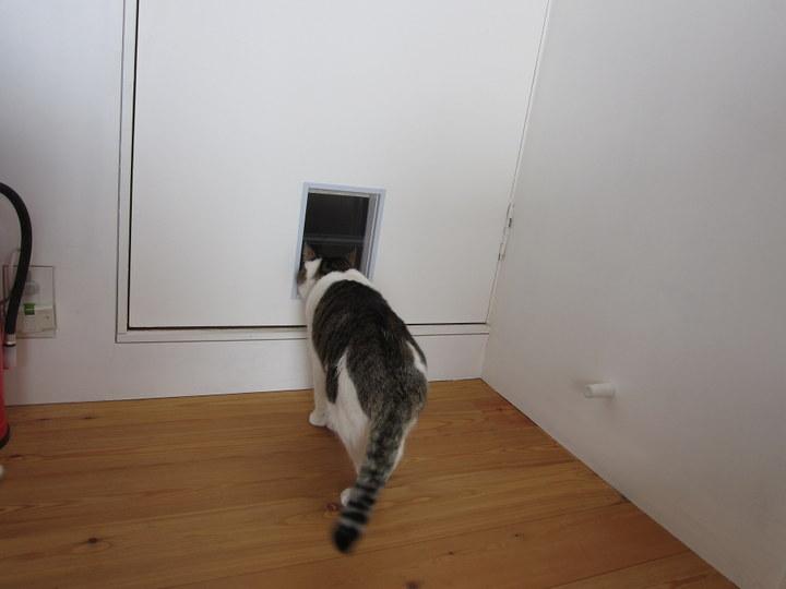 mame_door3.jpg
