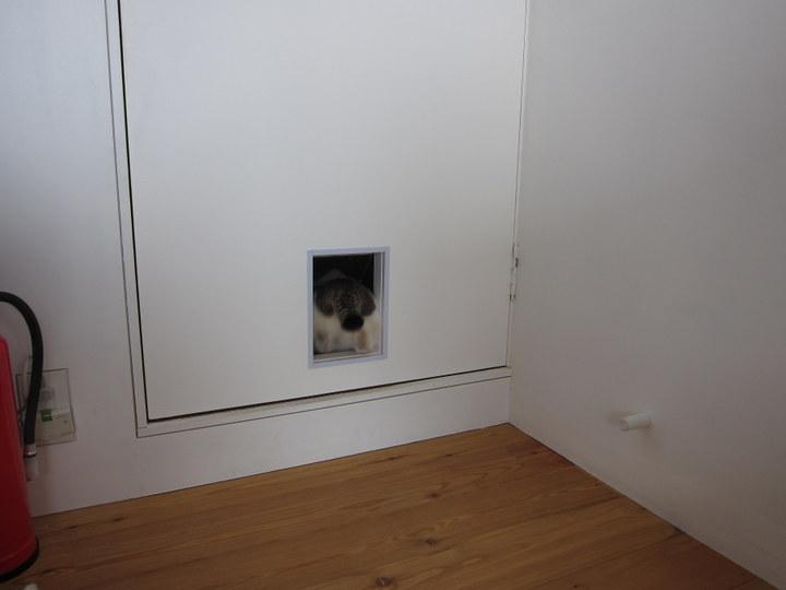 mame_door4.jpg