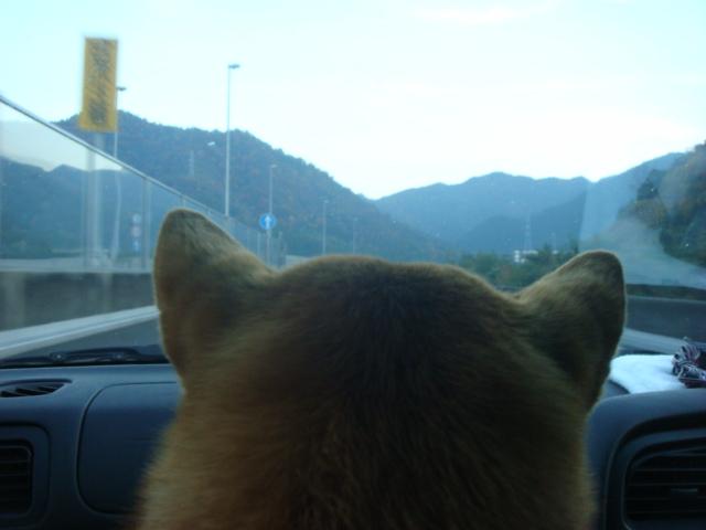 ドライブじゃ2