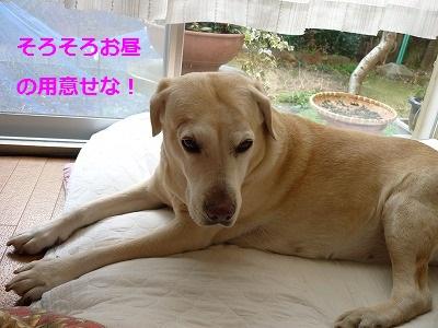 3_20100110135745.jpg
