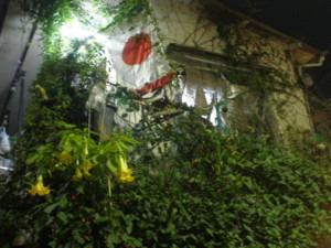 asagaya-street159.jpg