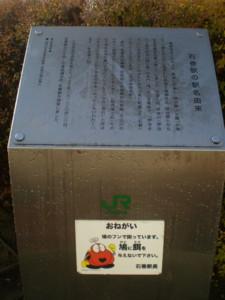 ishinomaki-street10.jpg