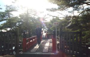 matsushima50.jpg