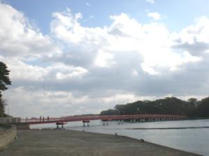 matsushima54.jpg
