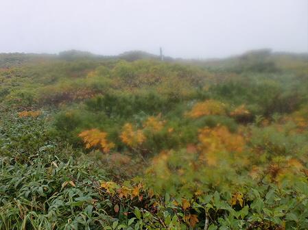 三ツ石山06(2011.9.21)佐々木さん