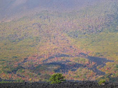 岩手山焼走り熔岩流の紅葉06(2011.10.11)