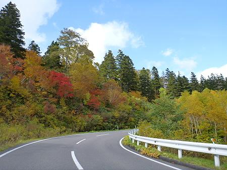 樹海ラインの紅葉12(2011.10.11)