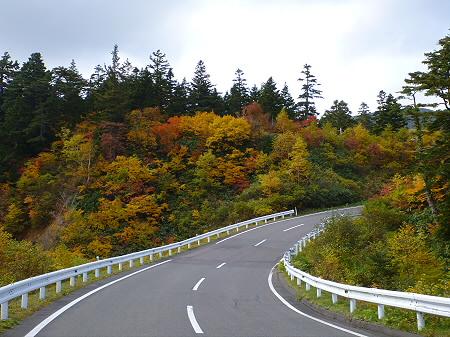 樹海ラインの紅葉14(2011.10.11)