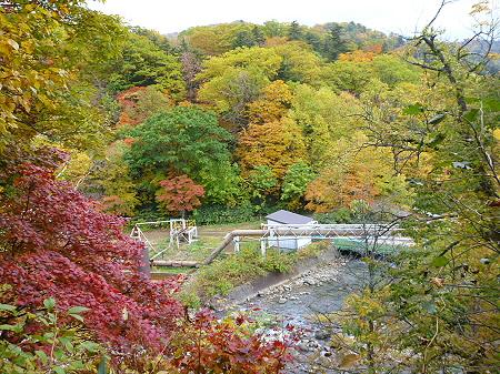 樹海ラインの紅葉18(2011.10.11)
