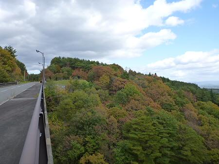 アセ沼橋04(2011.10.18)