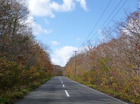 安比高原03(2011.10.18)