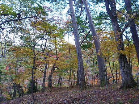 不動の滝05(2011.10.18)