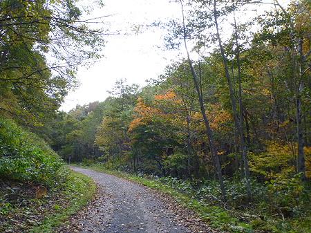 林道を行く01(2011.10.18)