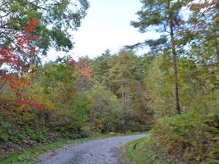 林道を行く02(2011.10.18)