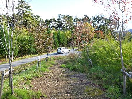 林道を行く10(2011.10.18)