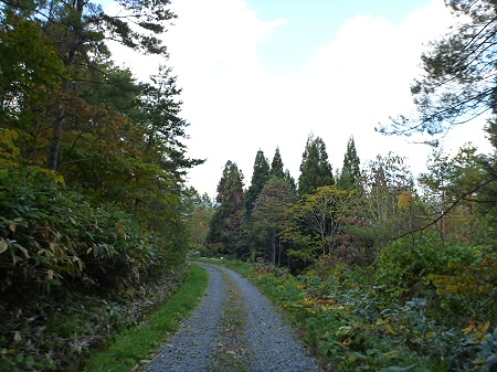 林道を行く11(2011.10.18)
