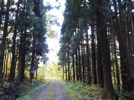 林道を行く12(2011.10.18)