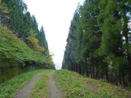 林道を行く14(2011.10.18)