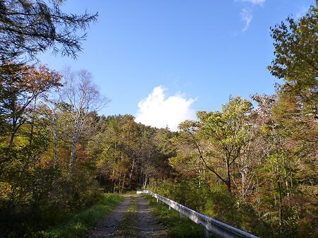 林道を行く22(2011.10.18)