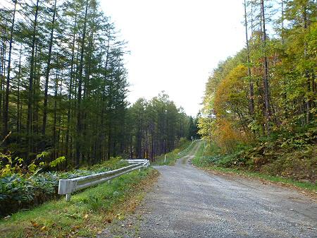 林道を行く24(2011.10.18)
