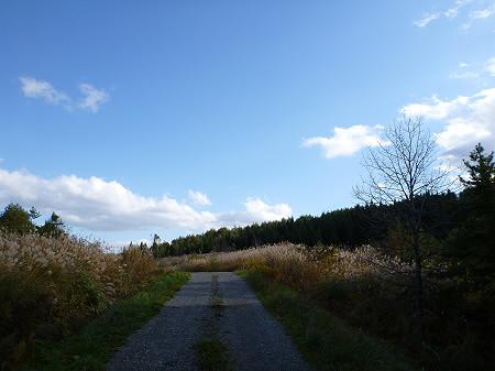 林道を行く26(2011.10.18)