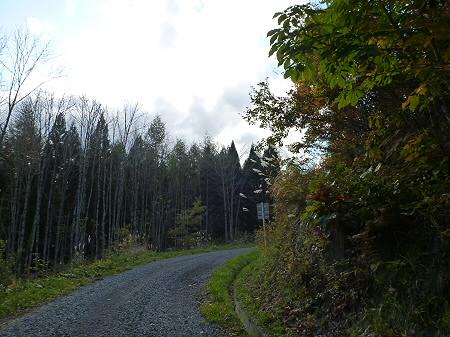 林道を行く28(2011.10.18)