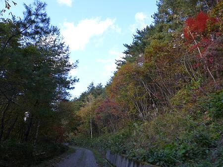 林道を行く34(2011.10.18)