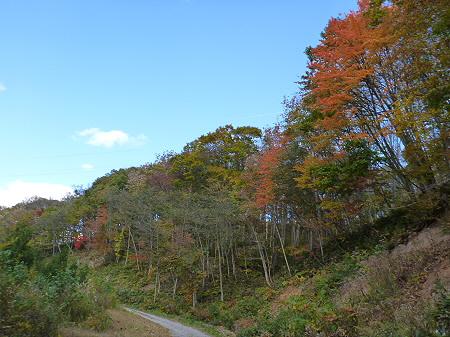 林道を行く36(2011.10.18)