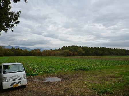 産直下坊05(2011.10.28)