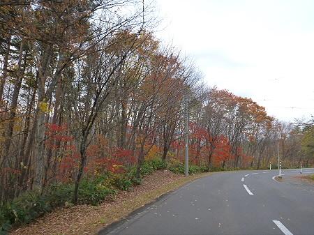 八幡平温泉郷の紅葉04(2011.11.2)