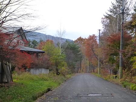八幡平温泉郷の紅葉09(2011.11.2)