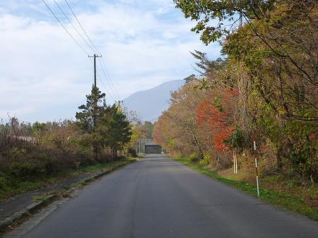 松森山自然環境保全地域の紅葉02(2011.11.4)
