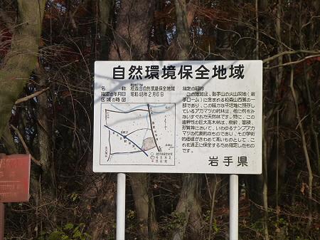 松森山自然環境保全地域の紅葉09(2011.11.4)