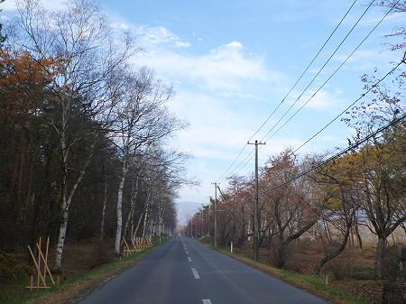 県道23号線の紅葉02(2011.11.4)
