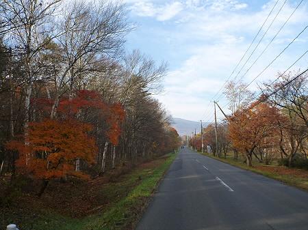 県道23号線の紅葉05(2011.11.4)