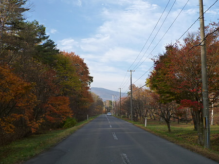県道23号線の紅葉09(2011.11.4)
