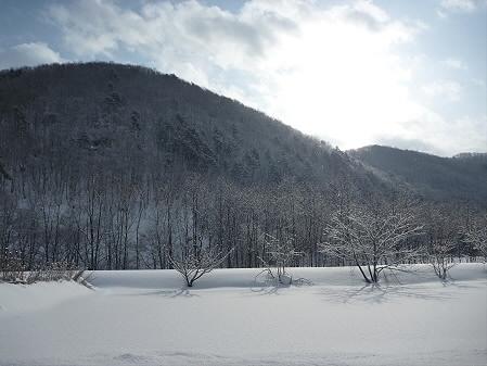マニハチ探検隊04(2011.2.11)雪景色