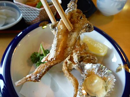 マニハチ探検隊34(2011.2.11)御食事処かたるべ