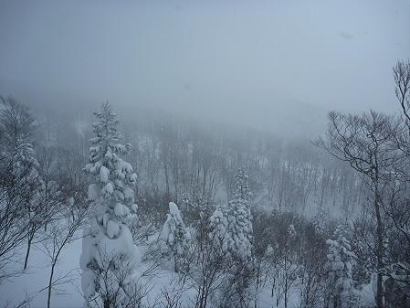 マニハチ探検隊43(2011.2.11)阿仁スキー場