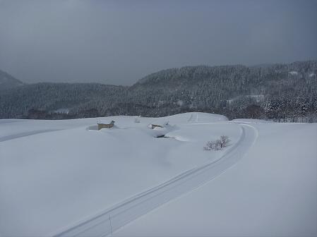 マニハチ探検隊55(2011.2.11)阿仁スキー場