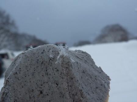 マニハチ探検隊57(2011.2.11)阿仁スキー場