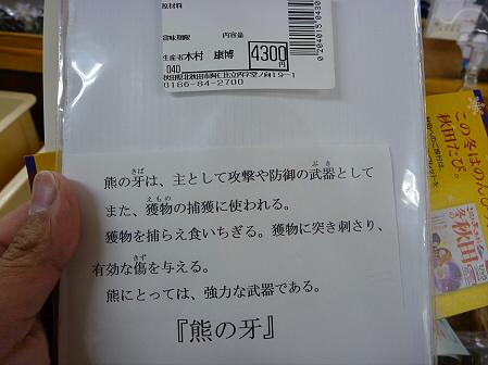 マニハチ探検隊66(2011.2.11)道の駅あに
