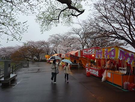 高松公園の桜04(2011.4.30)