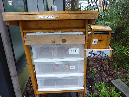 高松公園の桜23(2011.4.30)