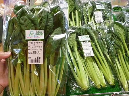 物産館あすぴーての野菜04(2011.5.7)