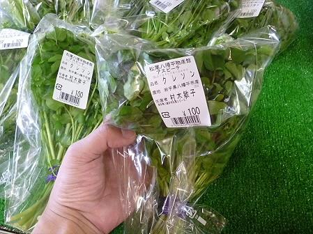 物産館あすぴーての野菜05(2011.5.7)
